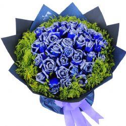 一生爱你/33朵蓝玫瑰