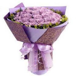 爱你心中/33朵紫玫瑰