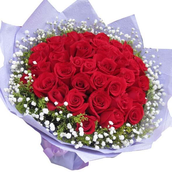 三生三世/33朵红玫瑰: 33朵红玫瑰,满天星黄莺外围