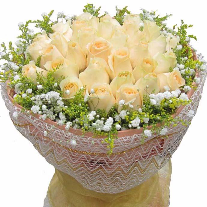 小窗相思/33朵香��玫瑰
