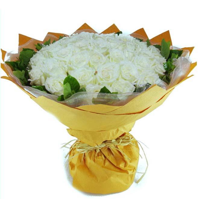 爱情如命/50朵白玫瑰