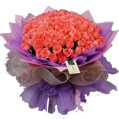 疼爱一生/50朵粉玫瑰