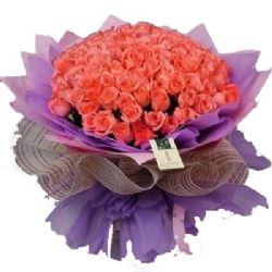 疼�垡簧�/50朵粉玫瑰
