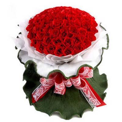无悔的爱 /50朵红玫瑰