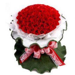 �o悔的�� /50朵�t玫瑰