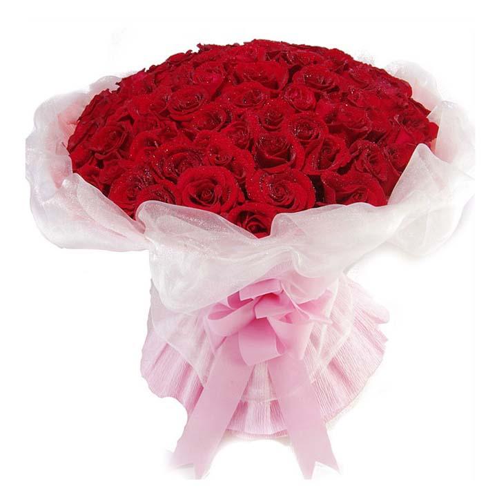 风样自由/50朵红玫瑰