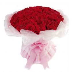 �L�幼杂�/50朵�t玫瑰