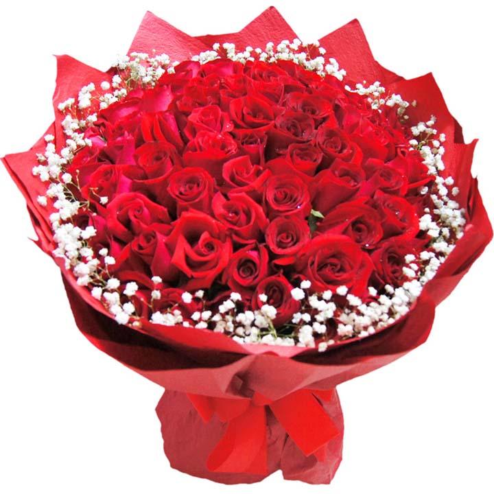 咱�z的�矍�/66朵�t玫瑰