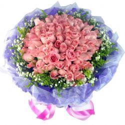 �鄣牧_曼史/66朵粉玫瑰
