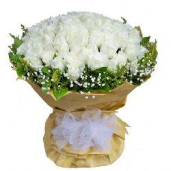 白色恋人/66朵白玫瑰
