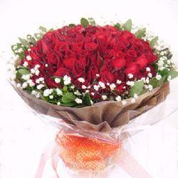 爱人/101朵红玫瑰