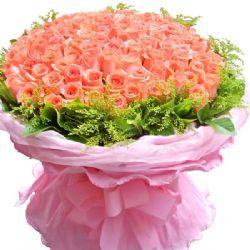 求婚/101朵粉玫瑰