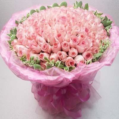 浪漫�c激情/101朵粉玫瑰