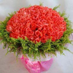 照顾你/108朵粉玫瑰