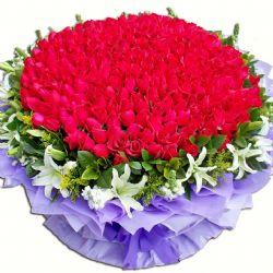 爱你到永远/365朵红玫瑰
