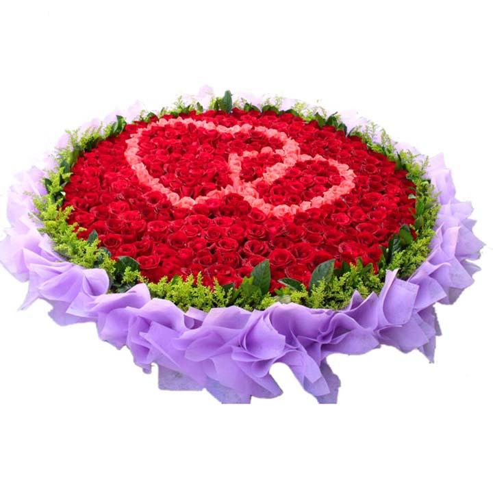 想你的三百六十五天/365朵玫瑰: 365朵红玫瑰+粉玫瑰 (粉玫瑰制作心型图案),外围黄莺、少量绿叶