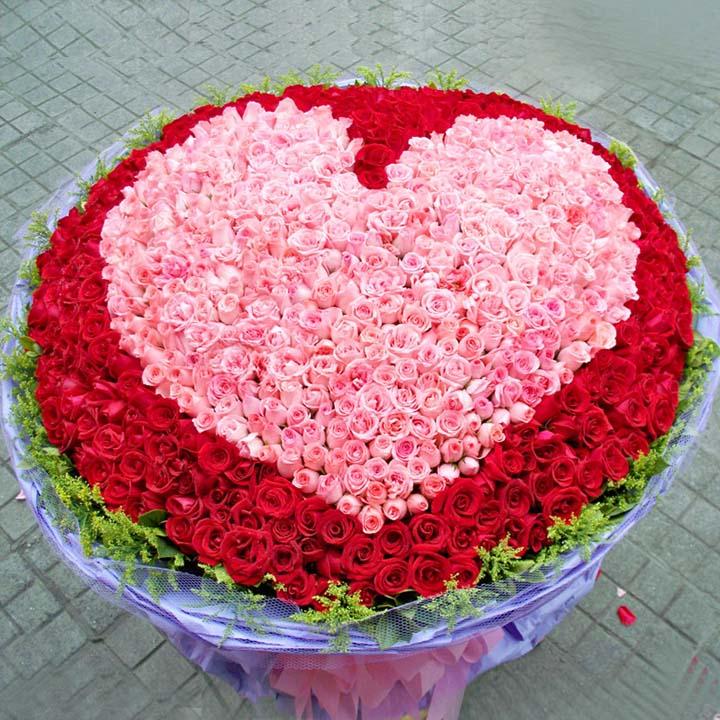 等待/999朵玫瑰: 999朵玫瑰(中間粉玫瑰圍成心型,紅玫瑰外圍),外圍黃鶯,綠葉
