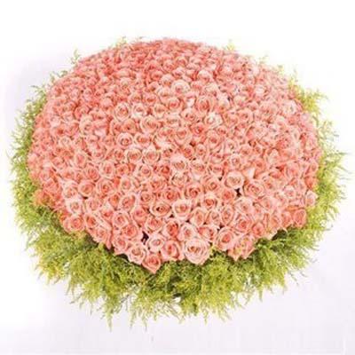 爱你到永远/999朵粉玫瑰