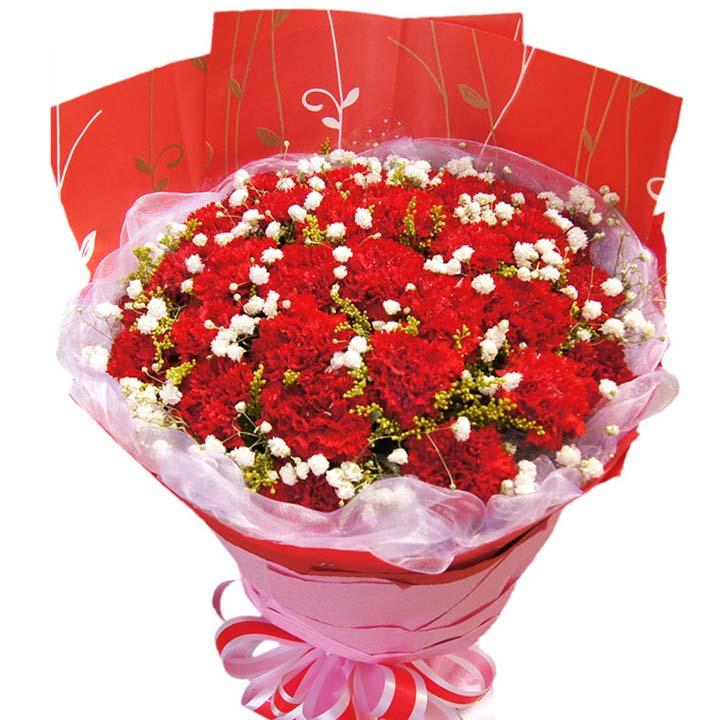 遙寄相思/33朵康乃馨: 33朵紅色康乃馨,搭配黃鶯、滿天星