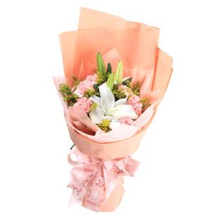8枝粉色康乃馨/健康平安