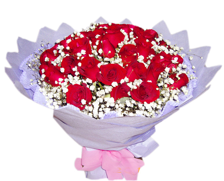 共渡今生/33朵红玫瑰