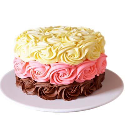 鲜奶蛋糕/锦簇