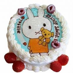 鮮奶蛋糕/乖乖兔: 圓形奶油蛋糕,新鮮時令點綴,一只可愛小兔子。