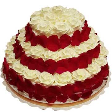 鲜奶水果蛋糕/幸福牵手