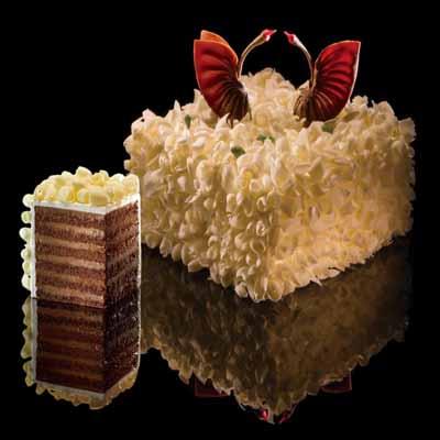 黑天鹅蛋糕/至美