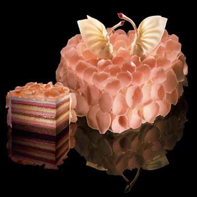 黑天鹅蛋糕/心舞
