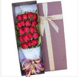 19枝红玫瑰/陪伴你