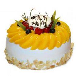 水果蛋糕/父爱如山