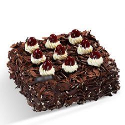 巧克力蛋糕/魔幻�r光