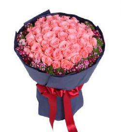50枝粉玫瑰/浪漫�_�
