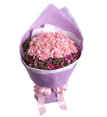 16枝粉色康乃馨/美丽春漾: 16枝粉康,石竹梅围绕