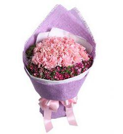 16枝粉色康乃馨/美丽春漾