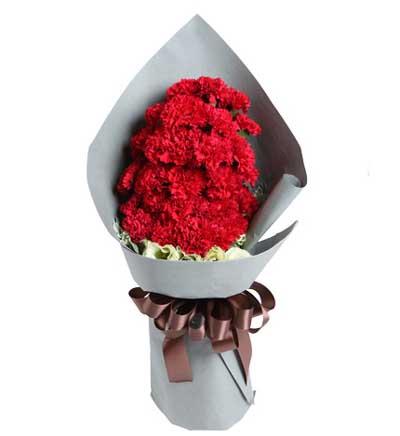 29枝红康乃馨/拥抱温暖的爱: 29枝红康乃馨,配草