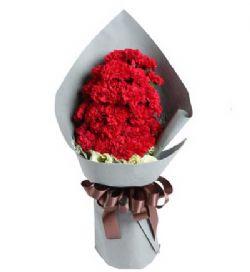 29枝红康乃馨/拥抱温暖的爱