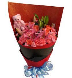 18枝粉色康乃馨/温馨