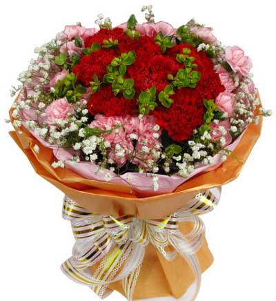 42枝康乃馨/金色年华: 12枝红色康乃馨,30枝粉康乃馨,满天星+绿叶适量