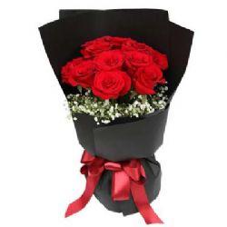 11枝红玫瑰/黑夜之光