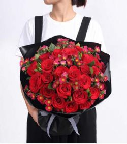 33枝�t玫瑰/�家女孩