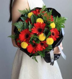 白羊座守护花