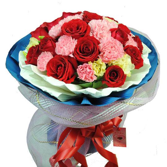 18朵红玫瑰/多姿多彩