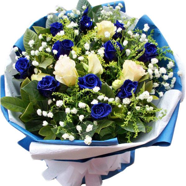 精选挑选11枝蓝玫瑰/和你在一起