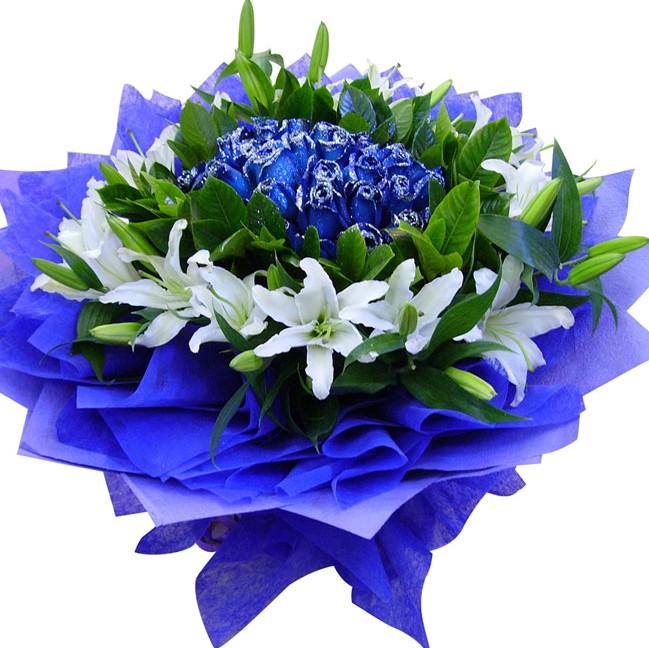 21朵蓝色妖姬/蓝色多瑙河