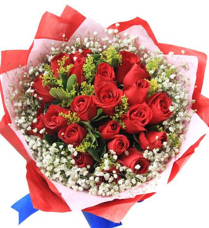 19枝红玫瑰/美丽约会