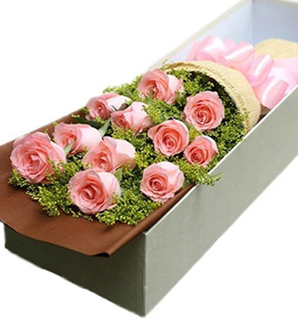 11枝戴安娜玫瑰/粉色之恋