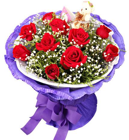 11枝红玫瑰+1只小熊/一辈子
