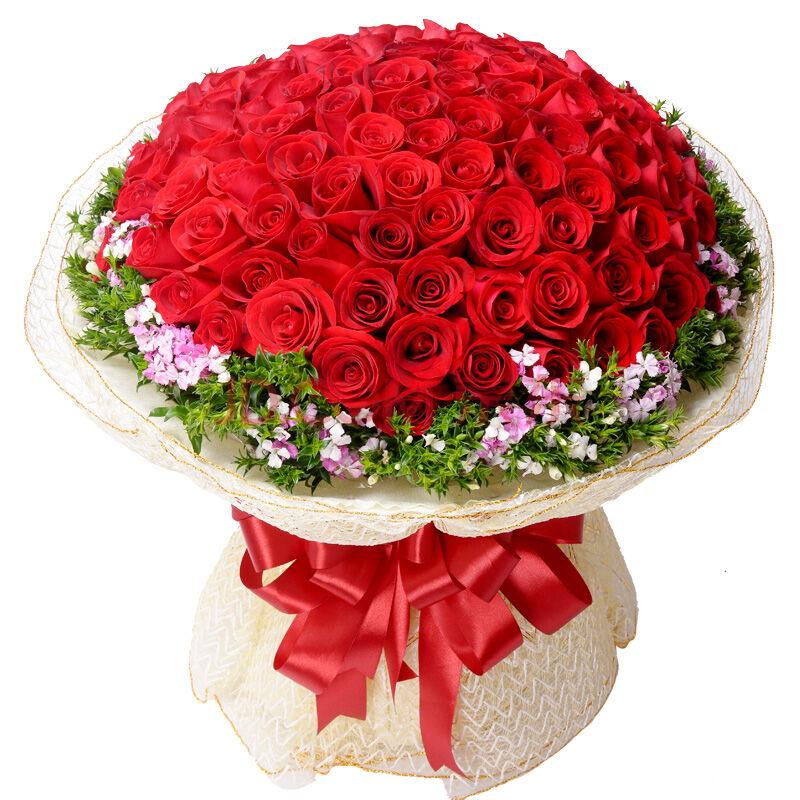 红玫瑰99朵,绿叶围绕